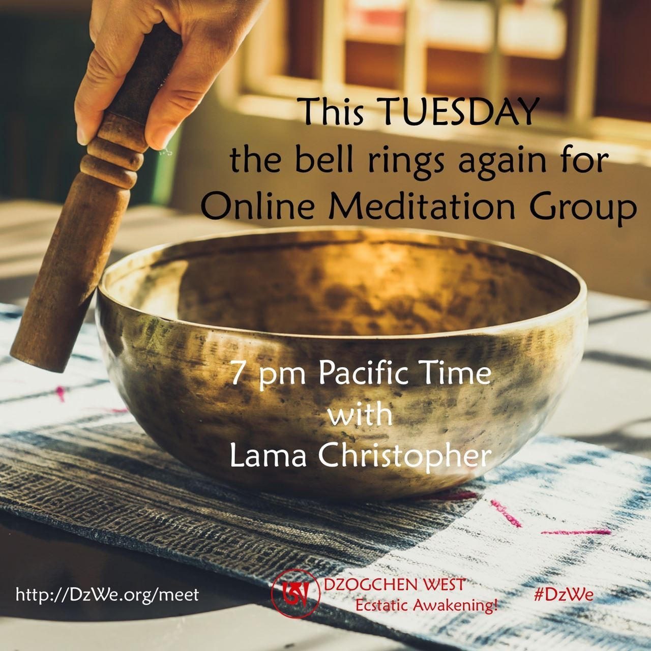 Online Meditation Group this TUESDAY